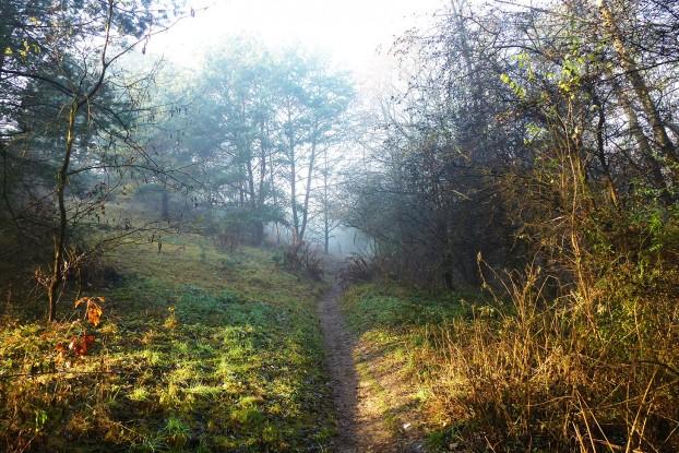 ścieżka przez górki 2