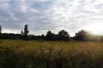 Ul. Azaliowa 2