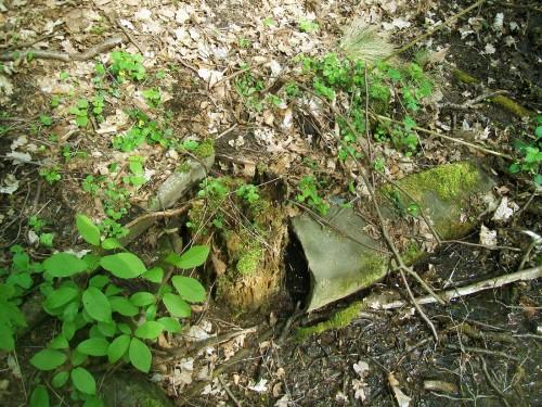 betonowa rynna w strumyku i inne