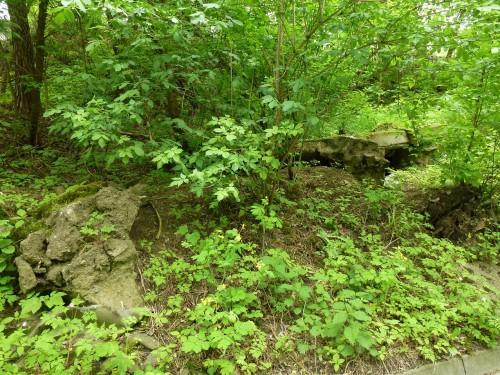 betonowe ruiny przy Gołębiej