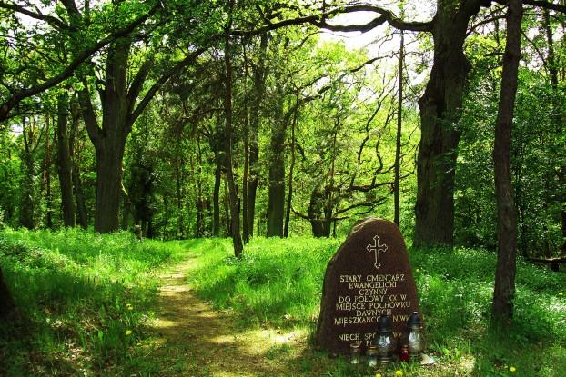 ewangelicki cmentarz na Niwce