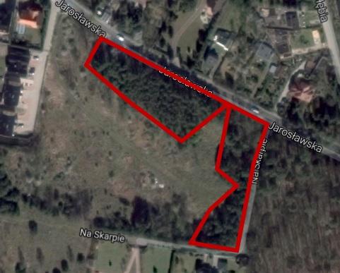 zagrożone lasy przy Jarosławskiej