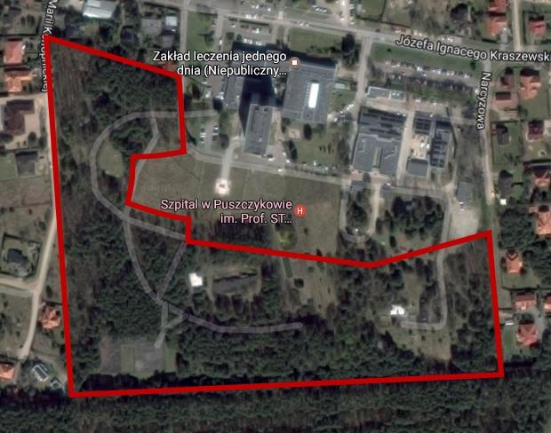 zagrożone lasy przy szpitalu